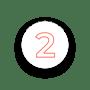 icon N2