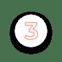 icon N3